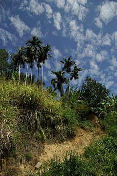 The Sky in Ella, Sri Lanka (www.secretlanka.com)