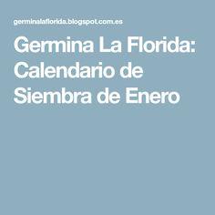Germina La Florida: Calendario de Siembra de Enero