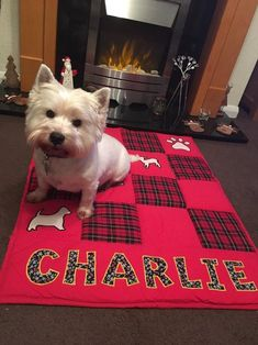Personalised Patchwork Baby Quilt For Dogs, Quilted Multicoloured Blanket, Nursery quilt, Baby Shower Gift Dog Quilts, Baby Quilts, Hotdog Dog, Dog Accesories, Baby Patchwork Quilt, Personalised Cushions, Silly Dogs, Dog Blanket, Fabric Gifts
