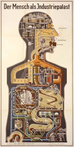 Map of a human body. »Der Mensch als Industriepalast« by Fritz Kahn, a fascinating chromolithograph of the human body and it's imaginary inner workings, creating rooms where workers diligently carried out the circulatory, digestive, metabolic and respiratory work of the body. In this modernist view of anatomy each input, be it air or food, was broken down into it's individual elements.