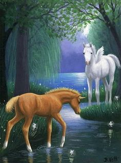 Unicorn pegasus foal horse lake fireflies fantasy limited edition aceo print art #Realism