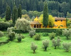 Print of Tuscany  Yellow Farmhouse in Tuscany by GregsFineArt, $45.00