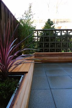 Small urban garden in South London by waynemaxwell. Ceder seating boxes hide galvanized boxes for storage.