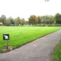 Er is een stuk gebied afgezet waar de hond vrij mag rondlopen.