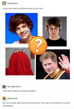 Omg I Love Harry His British Accent Is So Cute - Funny Memes. The Funniest Memes worldwide for Birthdays, School, Cats, and Dank Memes - Meme Stupid Funny, Haha Funny, Funny Memes, Funny Stuff, Random Stuff, Funny Drunk, 9gag Funny, Memes Humor, Funny Tweets
