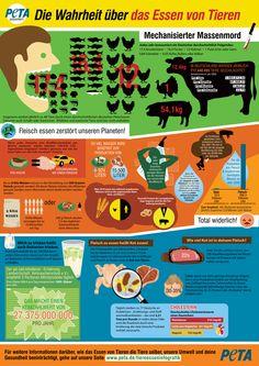 Diese Infografik zeigt die Wahrheit über das Essen von Tieren und seinen Auswirkung für Tiere, auf die Gesundheit und unseren Planeten.