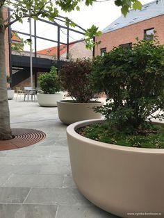 """Na historických parcelách městských domů v Trnavě vzniklo nové náměstí. Multifunkční centrální prostor """"Nádvorie"""" je definován 4 vzrostlými stromy, mezi které jsme umístili mobilní květináče. Květináče na kolečkách jsou vyrobeny ve třech barevných odstínech a staly se tak praktickým, ale také designovým doplňkem nového náměstí. Celý komplex je přístupný třemi samostatnými vchody a při pořádání kulturních akcí se dají květináče pohodlně přemístit tak, aby vzniklo v tomto místě pódium a… Patio, Outdoor Decor, Plants, Handmade, Design, Home Decor, Hand Made, Decoration Home, Room Decor"""