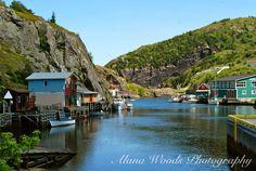 Quidi Vidi, Newfoundland   Alana Woods Photography