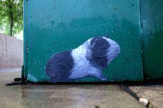 Guinea pig street art on the sidewalks of Philadelphia