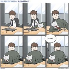 The Adventures of Business Cat | Keyboard