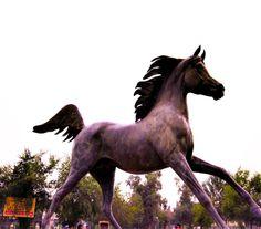 Horse Statue in Zora Park - Baghdad متنزه الزوراء