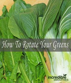 Why (And How) You Should Rotate Your Leafy Greens - Incredible Smoothies Click the image for more info. Healthy Green Smoothies, Yummy Smoothies, Juice Smoothie, Healthy Drinks, Healthy Food, Fruit Detox, Eat Fruit, Clean Eating Challenge, Eating Clean