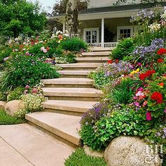 This Planting Guide Solves All of Your Sloped Garden Problems Steps convert a slope from inaccessible to inviting. Wide steps that meander or zigzag up a steep slope are easier to climb than those that escalate rapidly. Test Garden Tip: Begin building at Sloped Backyard Landscaping, Landscaping On A Hill, Sloped Yard, Landscaping Tips, Landscaping Software, Arizona Landscaping, Terraced Landscaping, Landscape Design, Garden Design