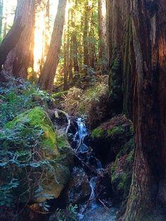 Hiking Ethics: 9 Tips For Behaving In The Wilderness