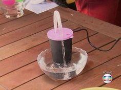 Fonte de água para gatos (Foto: TV Globo)