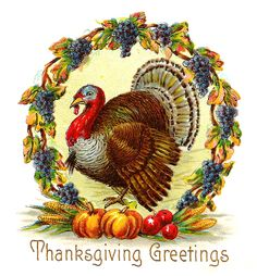 Antique Images: Free Thanksgiving Day Graphic: Thanksgiving Turkey with Wreath o. - Antique Images: Free Thanksgiving Day Graphic: Thanksgiving Turkey with Wreath of Purple Grapes Sie - Thanksgiving Blessings, Thanksgiving Greetings, Vintage Thanksgiving, Thanksgiving Crafts, Vintage Holiday, Thanksgiving Decorations, Thanksgiving Graphics, Thanksgiving Wallpaper, Vintage Fall