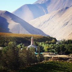 Elqui Valley- Chile