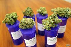 Amazing Medical Marijuana