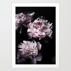Peonies Art Print by Wall Threads. Worldwide shipping available at Society6.com. Just one of millions of high quality products available.