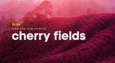 Infrared Photoshop Action: Cherry Fields