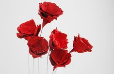 Mamà recicla: Roses pel Sant Jordi / Rosas por Sant Jordi / Rosas pelo Sant Jordi Flower Making, Paper Mache, Paper Flowers, Plants, Shop Windows, Saint George, Bb, Craft, Old Boxes