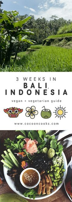 Our vegan & vegetarian GUIDE to Bali, complete with tips about where to stay, places to eat and loads more. Places To Eat, Cool Places To Visit, Bali With Kids, Vegan For A Week, Bali Restaurant, Bali Sunset, Bali Baby, Bali Honeymoon, Around The World In 80 Days
