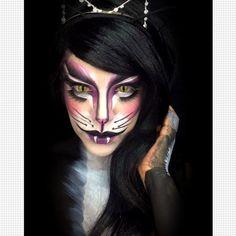 black cat from luvekat