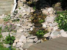 4 small ponds in a 50' stream