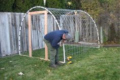 PVC pipe and a roll of fencing and this could be a pretty good rabbit house. I might have to try this.