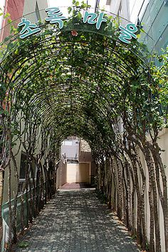Bush-Tunnel by For91days, via Flickr