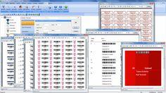 Bildschirmmasken ROBERT KNOWS - Inventarverwaltung, Helpdesk, Lizenzmanagement, Vertragsverwaltung, Netzwerkmanagement und noch viel mehr...