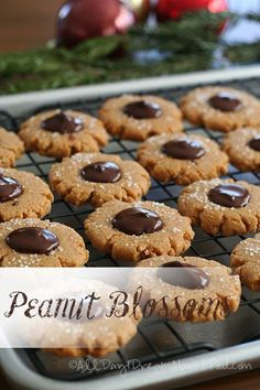 Low Carb Peanut Blossoms! These classic holiday cookies are keto and grain-free. #lowcarb #sugarfree #keto #christmascookies #glutenfree via @dreamaboutfood