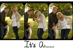 #Pregnancy #Gender #Reveal #Photography #Outdoor #Dog #Paw #Prints. Photography by #Zabrina #Tipton of #TiptonStudios.com
