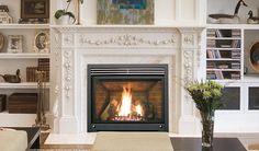 11 Cool Enviro Gas Fireplace Image Idea