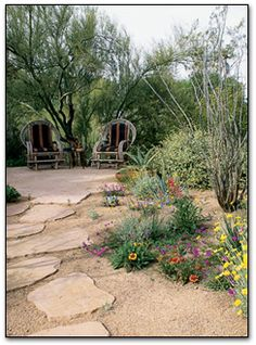 Landscape photo gallery - Landscaping with Style in the Arizona Desert