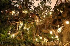 Treehouses by Night