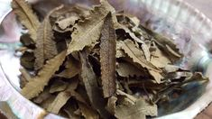 Loose Yerba Santa (Eriodictyon Californicum) aka Holy Herb, Mountain Balm, Consumptive's Weed, Bear Weed ~ 3/4 ounce package, Reiki infused by Kiliamma on Etsy