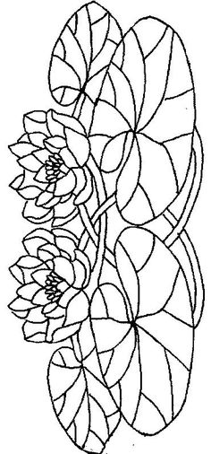 Water Lilies coloring page 19 Wallpaper