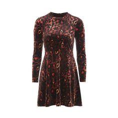 Topshop Animal Velvet Skater Dress (142415 PYG) ❤ liked on Polyvore featuring dresses, multi, velvet dress, high neck short dresses, long sleeve mini dress, long-sleeve velvet dress and velvet skater dress