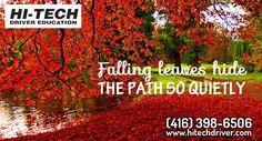 Wishing You Bright And Beautiful Fall Season From Hi-Tech Driver Education Team Members.. #happyfallseason #fallseason