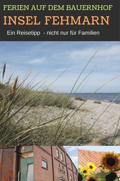 Farm holidays on the island of Fehmarn not far from the Baltic Sea: a travel tip for a family holida Travel Goals, Travel Tips, Farm Holidays, North Sea, Baltic Sea, Family Holiday, Dubai, Travel Destinations, Germany