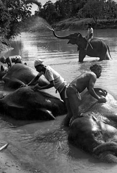 Ceylon, Kandy, March 1950 by Henri Cartier-Bresson