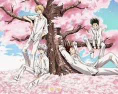 Hunter x Hunter (2011) Episode 144 Subtitle Indonesia / English Hunter.x.Hunter.Killua.Kurapika.Leorio.Gon.Wallpaper.cherry.blossom.tree