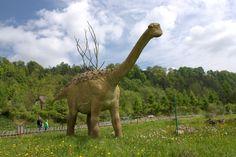 A random dinosaur Dinosaur Images, Camel, Elephant, Park, Google Search, Dinosaurs, Planets, Animales, Camels