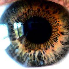 """@filenstyle's photo: """"#eyes #body #macro #macrophoto #iris #igersitalia #foto_italiane #igersgenova #iphonesia #instamood #webstagram #picoftheday #instadaily #colore_italiano #instamood #bestoftheday #igdaily #instagramhub #all_shot #editoftheday #instacool #igaddict #bestinstagramshots #instatime #beitalian #onmyway #iphoneonly #shoutoftheday #golosidifuturo #popularphoto #populars"""""""