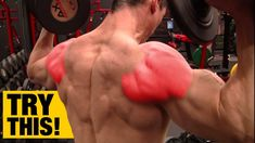 Shoulder impingement is one of the most common maladies negatively affecting upper body workouts. If you ever have had shoulder pain you know just how debili. Back Day Workout, Workout Warm Up, Shoulder Workouts For Men, Shoulder Exercises, Barbell Shoulder Press, Rear Delt, Overhead Press, Shoulder Muscles, Gym Workouts