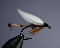 Wet flies have been around as long as fly fishing itself. Are they starting to see a renaissance? In fly tying circles at least, that may be the case, as tyers look for new challenges and new sources of inspiritaion.