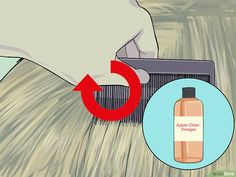 How to Make a Natural Flea and Tick Remedy with Apple Cider Vinegar. Pet owners have discovered that apple cider vinegar makes an alternative flea and tick repellent. The acidic taste is unappealing to fleas and ticks, so regularly. Get Rid Of Ticks, Killing Fleas, Apple Cider Vinegar Remedies, Water Retention Remedies, Ticks Remedies, Flea Treatment, Can Dogs Eat, Flea And Tick, Pet Care