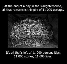 Stop the cruelty! Go vegan!