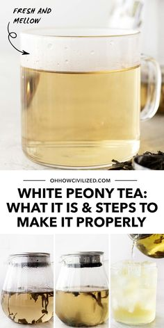 White Peony - it sounds pretty and looks like it too! In this guide I'll show you what this tea really is, what it can do for you, and how to make it with just a few, easy steps. Click to continue! Afternoon Tea Table Setting, Afternoon Tea At Home, White Peony Tea, White Peonies, Hot Tea Recipes, Drink Recipes, Tea Table Settings, Tea Etiquette, Perfect Cup Of Tea